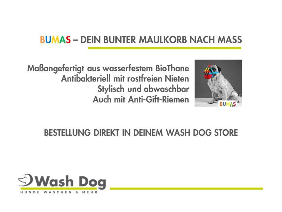 BUMAS_Infoscreen