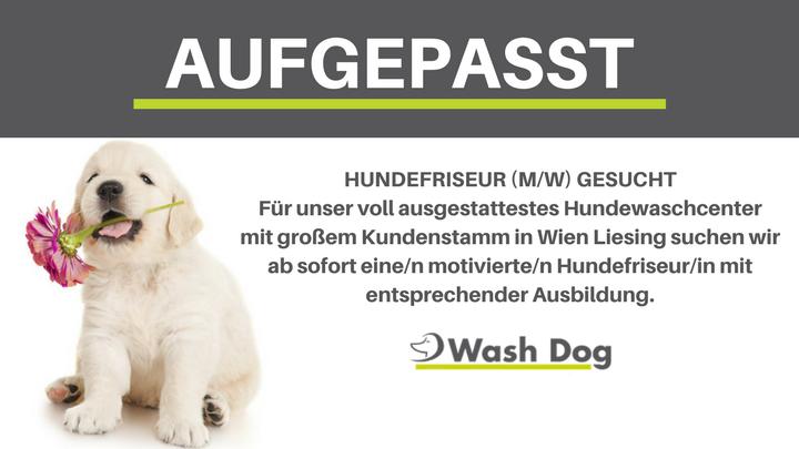 Copy of - SEITE LIKEN- BEITRAG KOMMENTIEREN- WASH DOG KARTE MIT € 50,- GUTHABEN GEWINNEN