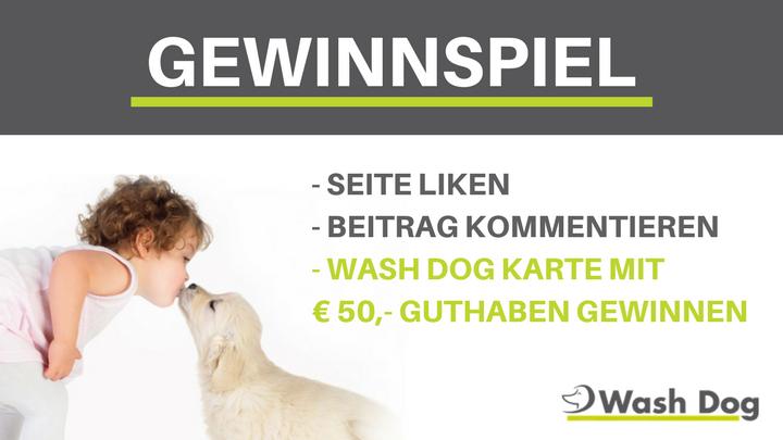 - SEITE LIKEN- BEITRAG KOMMENTIEREN- WASH DOG KARTE MIT € 50,- GUTHABEN GEWINNEN