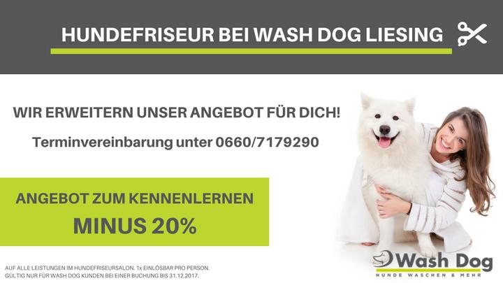 Hundefriseur INFOSCREEN (3)