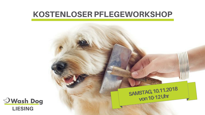 Pflegeworkshop